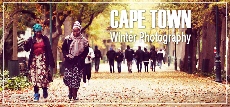 Cool Things To Do in Cape Town in Winter