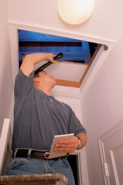 What lurks in the attic? The home inspector knows!