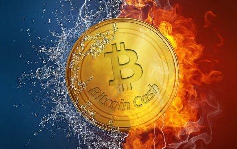 Биржа Bitstamp запустила торги Bitcoin Cash