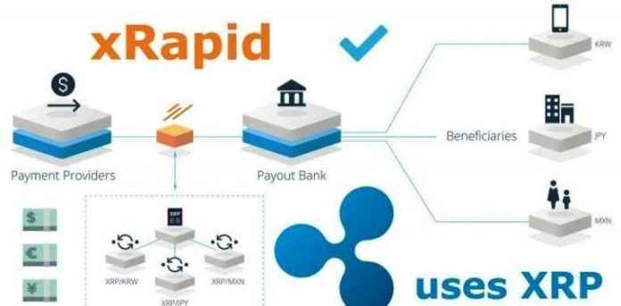 Брэд Гарлингхаус: XRP в 1000 раз быстрее и дешевле биткоина