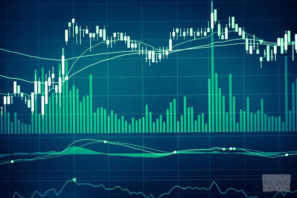 Платформа GloBee отказывается от поддержки Bitcoin Cash