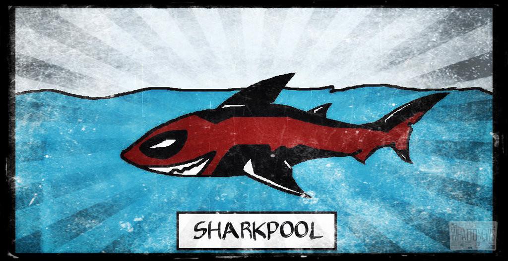 SharkPool угрожает уничтожить альткоины, использующие в названии Bitcoin