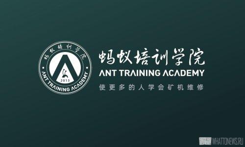Bitmain запускает обучающие курсы для майнеров