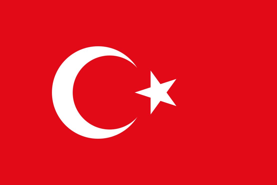 Турция начала подготовку к запуску государственной криптовалюты