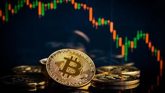 Как биткоин торговался с «дикими премиями» на криптобиржах после обвала цены