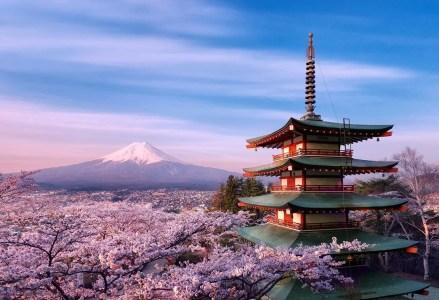 Японский министр объяснил, что криптовалютные пожертвования для политиков не противоречат закону