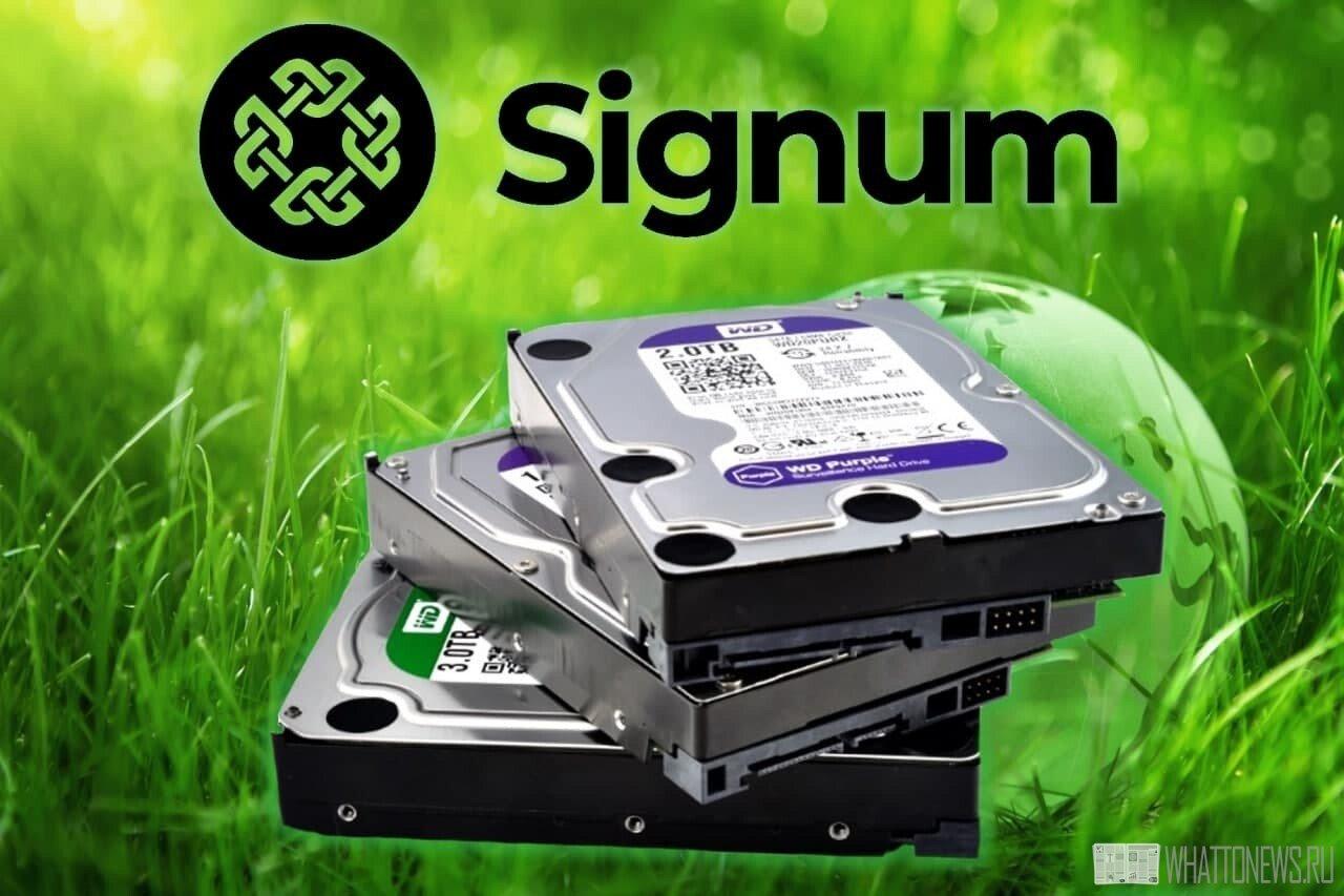 Дуал майнинг на жестких дисках: Signa + Биткоин HD (BHD) VS Чиа (Chia)