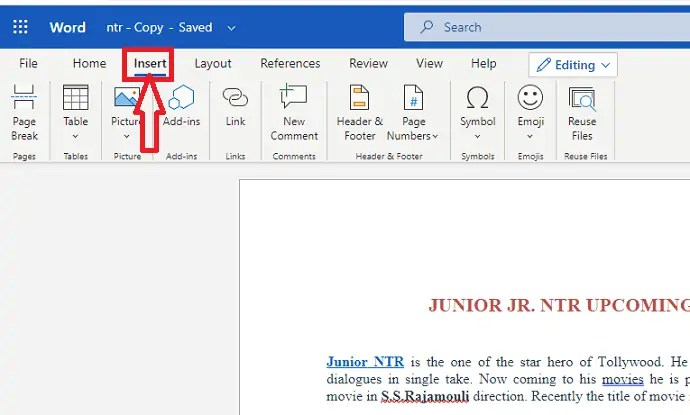 How to insert and format Pictures in word document 3