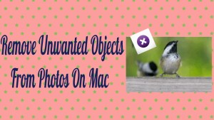 Remove Unwanted Objects