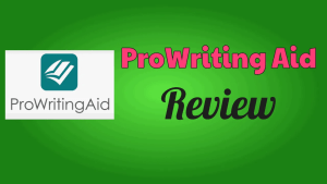 ProWriting Aid Review