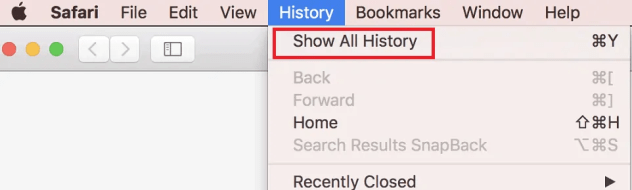 How to Manage & Clear Safari History, Cache & Cookies 5