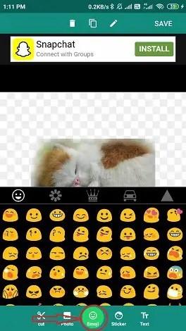 select your desired emoji.
