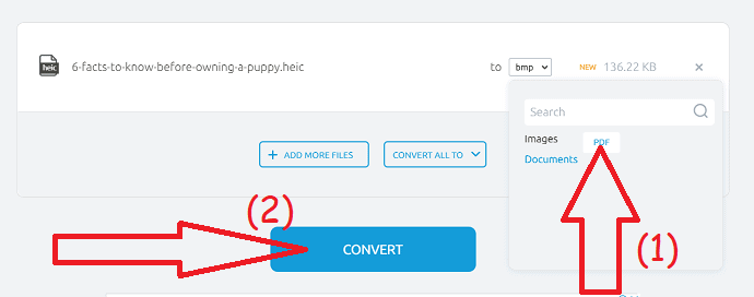 Click on the convert option.