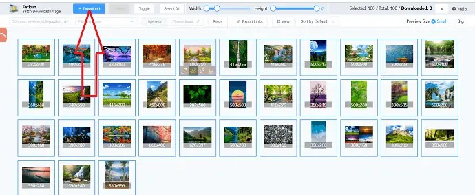 Selection of download option.