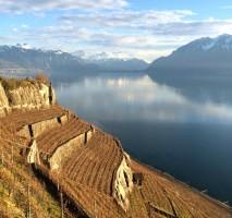 Lake Geneve No Snow