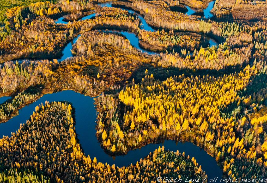 """Boreal Forest and Wetland, Athabasca Delta, Northern Alberta, 2010"" archival pigment print bonded to aluminum by Garth Lenz (courtesy of the artist and 555 Gallery, Boston)"