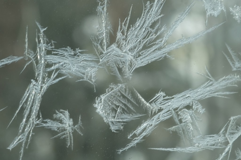 """Blizzard Aftermath (Ice Crystals), 2015"" by Elin Spring"