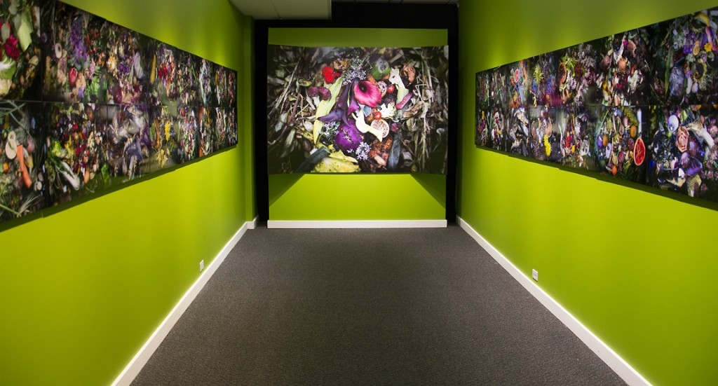Installation view of Steven Duede's Evanescence series at the Beautiful Decay show at Danforth Art Museum in Framingham, MA (photo courtesy of the artist).