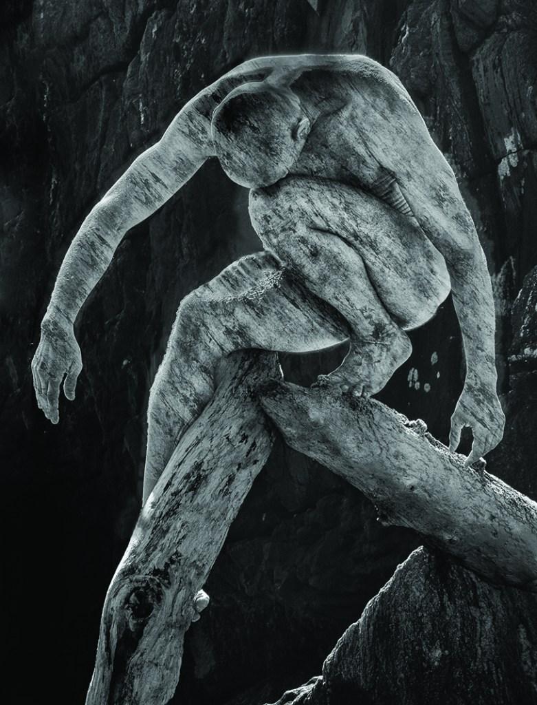"""Drift Wood, 2009"" by Moti Hodis (courtesy of the artist)."