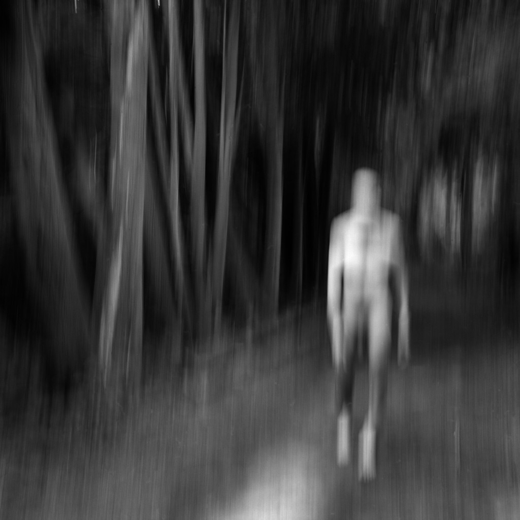 """Woods Walker, 2008"" by Larry Pratt (courtesy of the artist)."