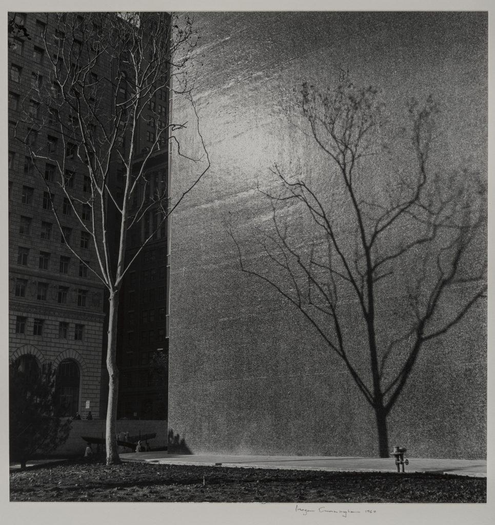 Crown‑Zellerbach Building, San Francisco Imogen Cunningham (American, 1883–1976) 1960 Photograph, gelatin silver print *The Lane Collection *© The Imogen Cunningham Trust. www.imogencunningham.com. *Courtesy, Museum of Fine Arts, Boston