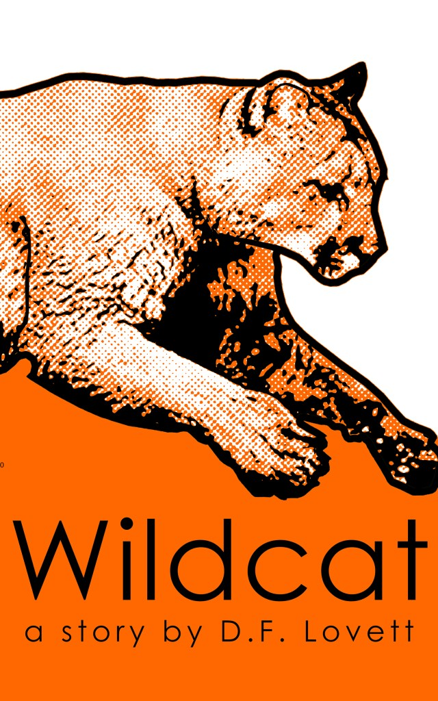 wildcat-01-upload-size