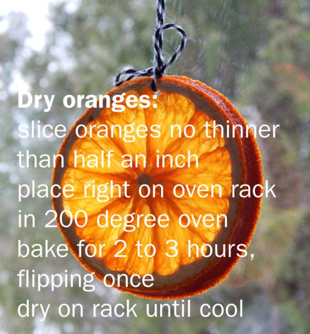 dried oranges diy