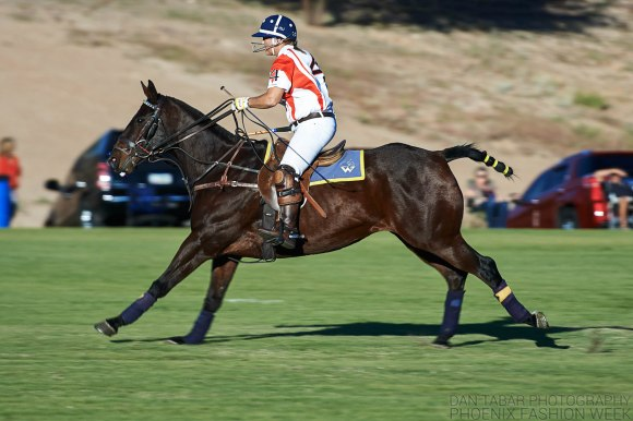 Polo in Scottsdale