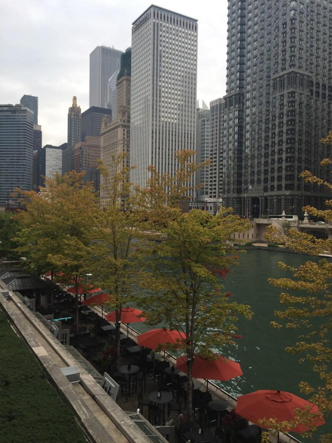 The Chicago River on a crisp fall morning.