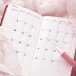ほぼ日手帳の使い方で主婦がデイリーマンスリーをフル活用する方法