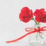 母の日の花以外の贈り物で喜ばれるものや変わったものを大公開