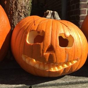 ハロウィンのかぼちゃはどこに売ってる?選び方や代用品のあれこれ
