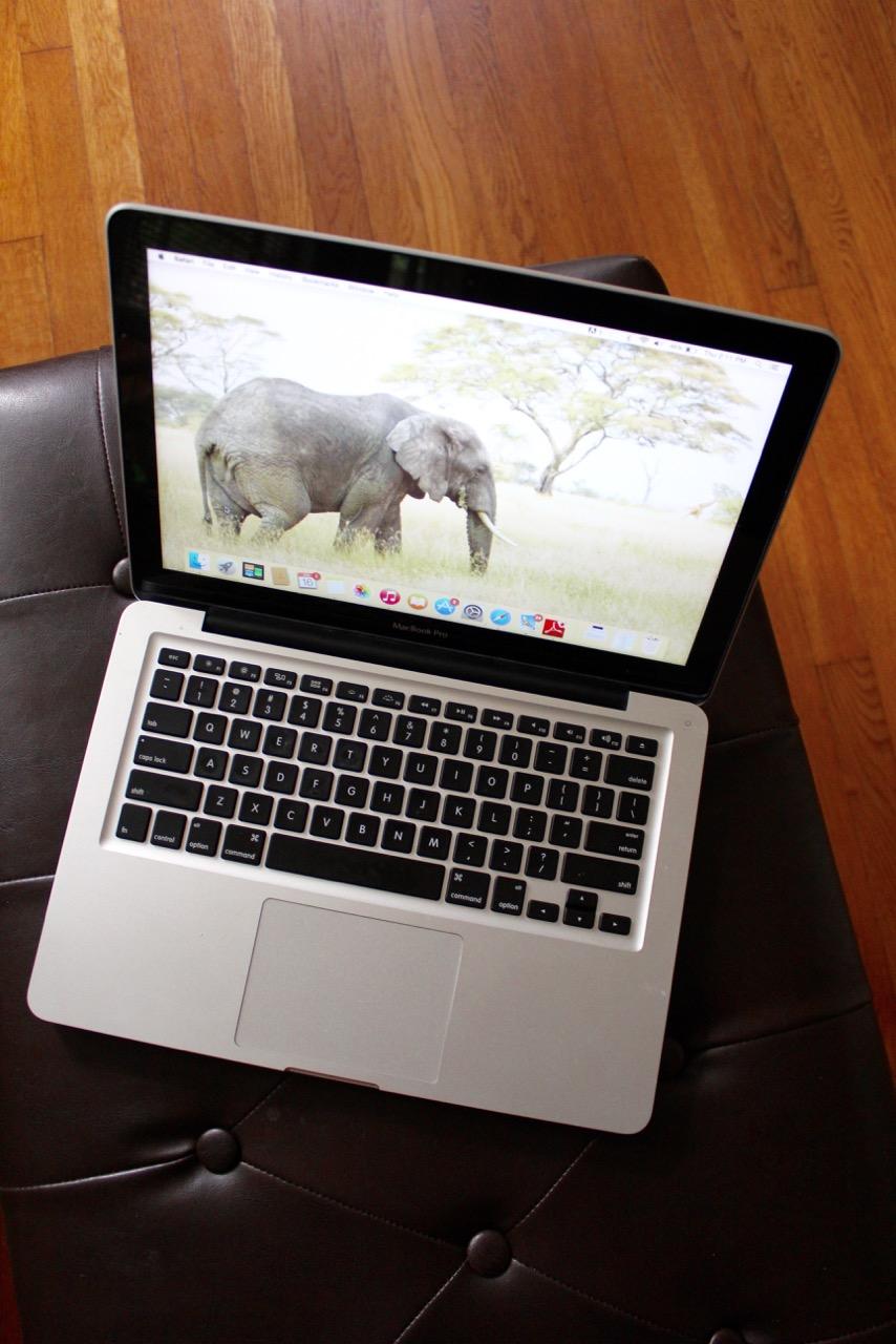 mac book elephant