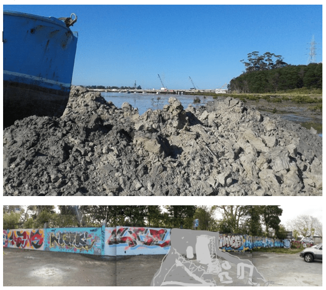 Clay from Whau River Mouth