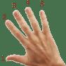 5 finger score