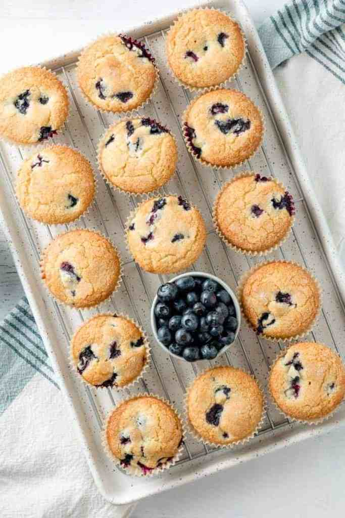 Gluten-free blueberry muffins on speckled cookie sheet with a cup of blueberries.