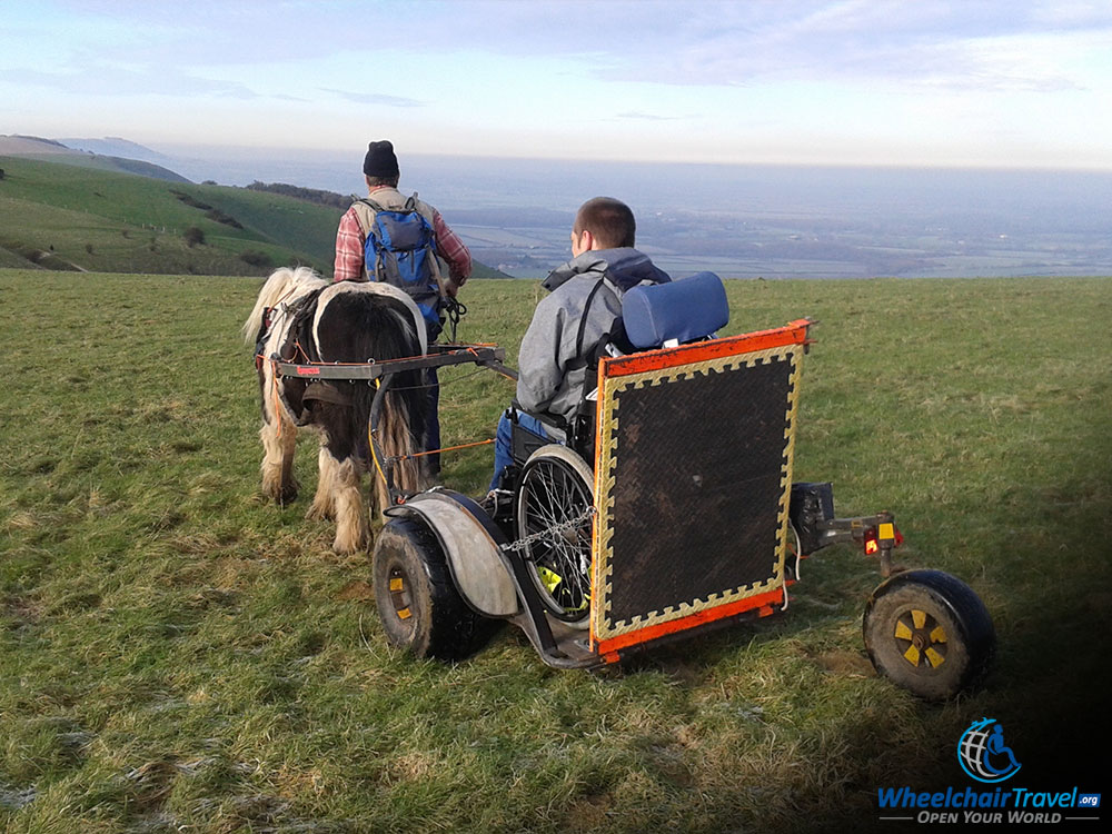 Wheelchair Carriage Attached to a Pony In An English Meadow