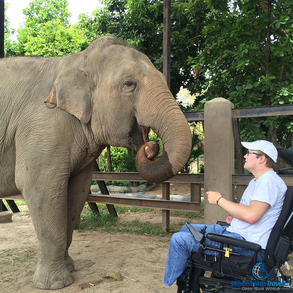 PHOTO DESCRIPTION: John sitting in his wheelchair, feeding an elephant at the Phnom Tamao Wildlife Rescue Center in Cambodia.