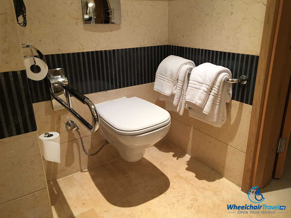 Toilet surrounded by grab bars