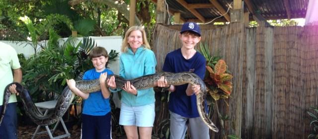 Florida Creatures