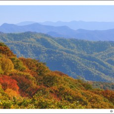 Fall Colors Part II & Adieu to the Smokies