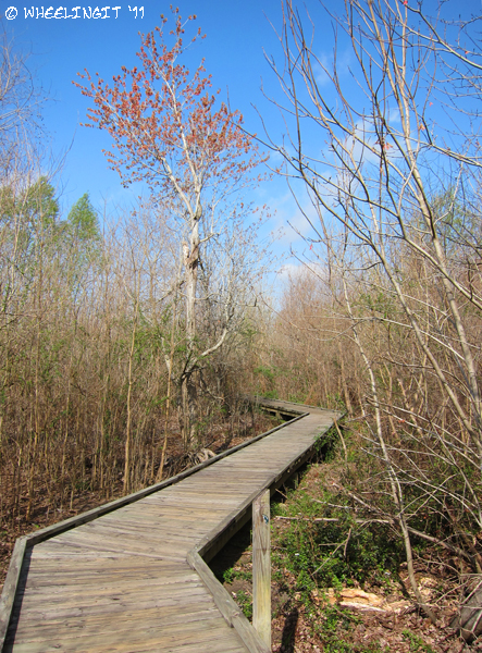 Sp Campground Review Bayou Segnette State Park New