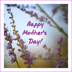 A Day for Mom