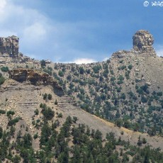 The Outdoor Museum – Chimney Rock, CO