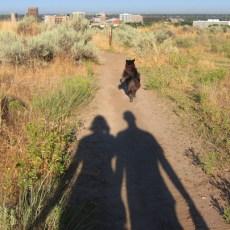 Oil Change & Pooch Play – Boise, ID