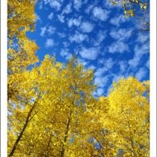 Friends & Fall Colors – Mammoth Lakes, CA