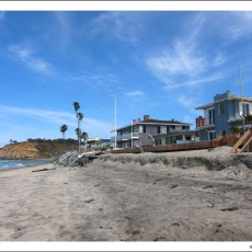 Wet & Wonderful – Del Mar Beach
