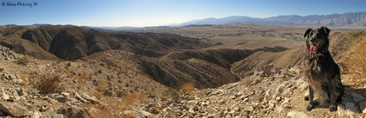 Panorama from the glorious summit