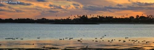 Sunset on Mission Bay