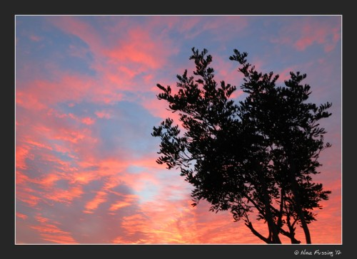 C-20121225 Sunset (1) (JPG)